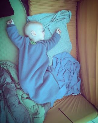 rocco slaapt